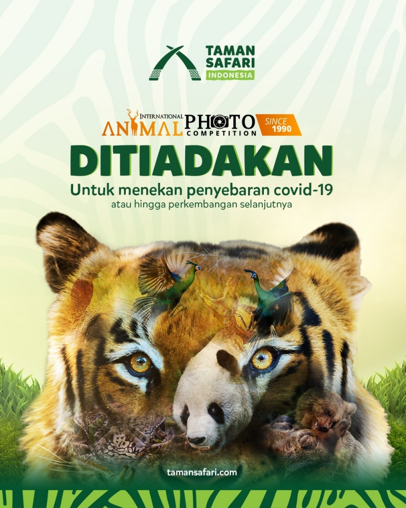 International Animal Photo Competition (IAPC) Tahun 2020: Ditiadakan!