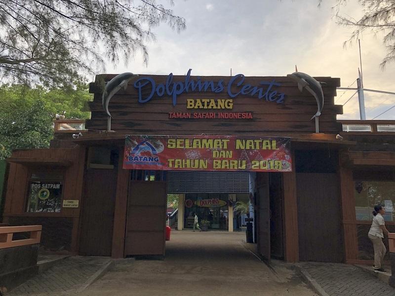 Menikmati Konservasi Lumba-lumba di Batang!
