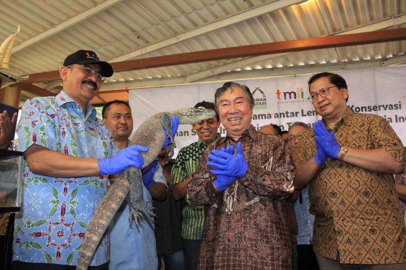 Taman Safari Indonesia Hibahkan Sepasang Komodo Kepada TMII