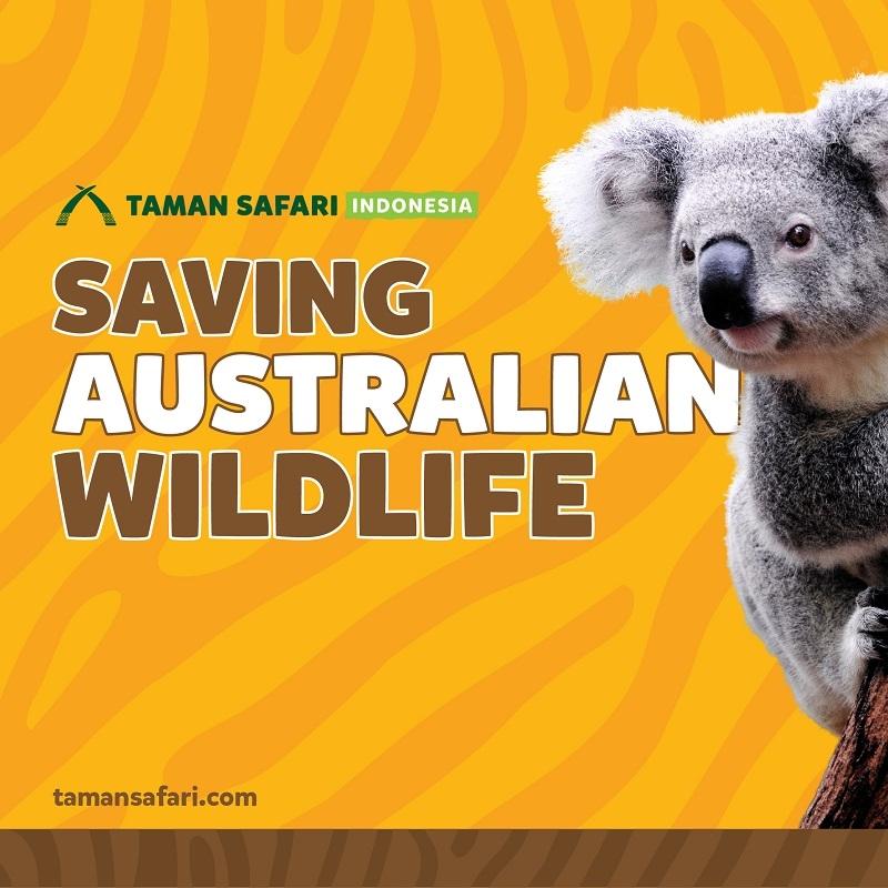 'Saving Australian Wildlife', TSI Ajak Masyarakat Berdonasi untuk Satwa Korban Kebakaran Hutan Australia!